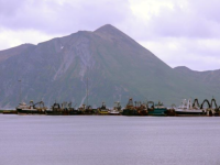 Fishing vessels in port at Dutch Harbor.  [Russ Marvin]
